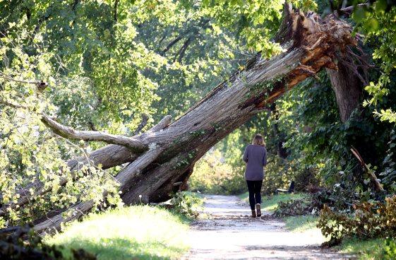 garantie catastrophes naturelles